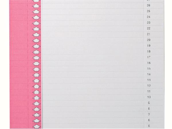 Pk Ruiterstroken Oblique 9-vit lateraal roze